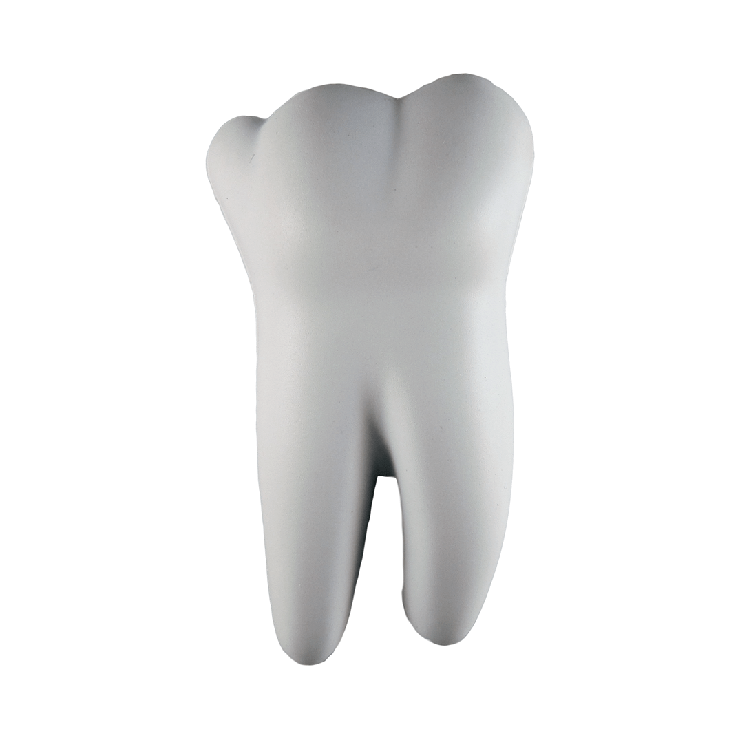 Tooth Medical Front