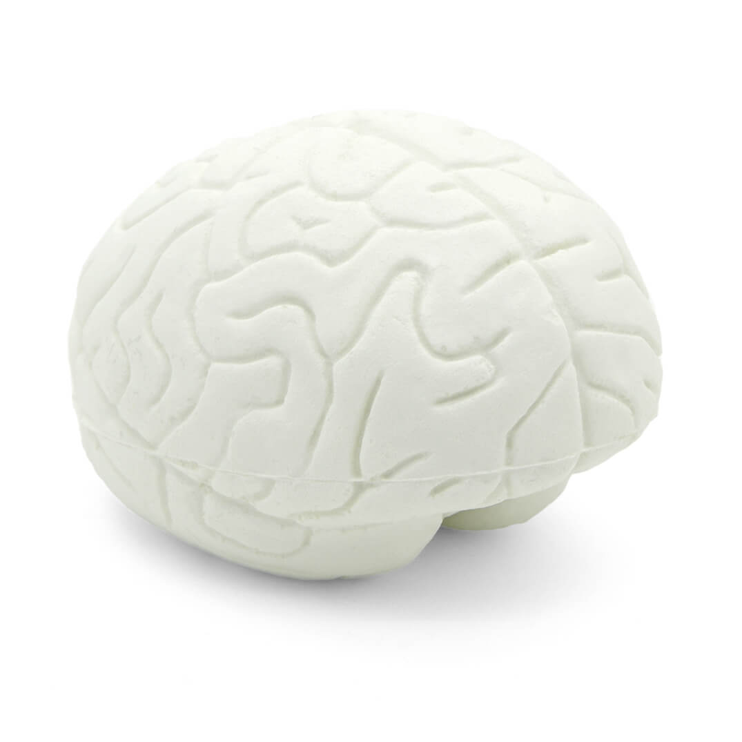 Small Brain Stress Ball White - UK Made