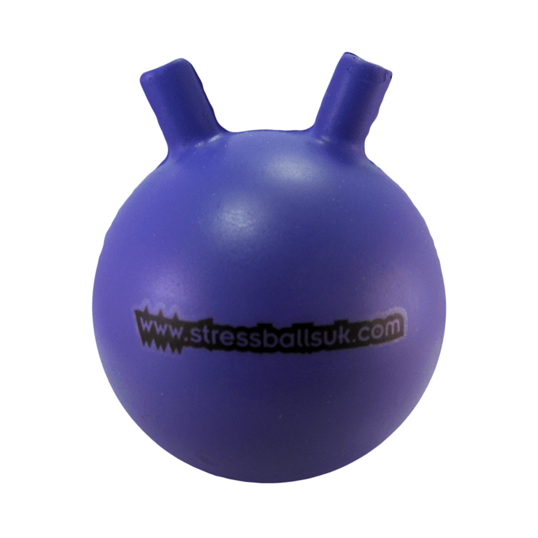 Space Hopper Front View
