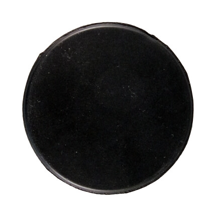 Puck Top View