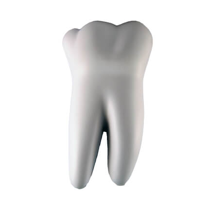 Tooth Medical Back