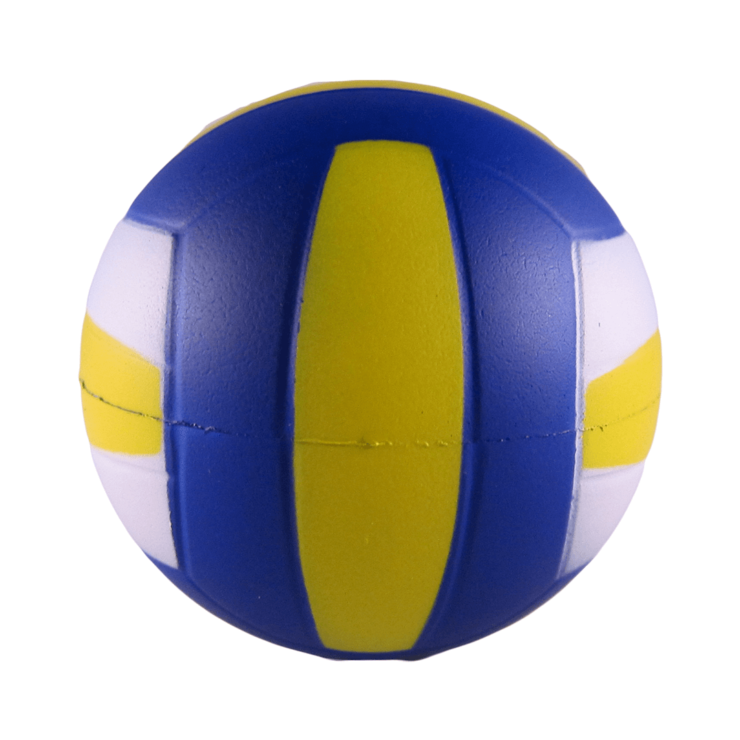 Volleyball Back