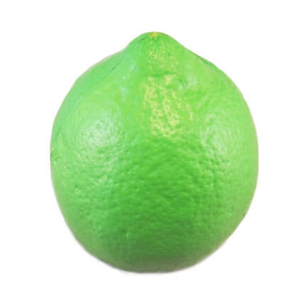 Lime shaped stress ball back view